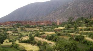 Senderismo-Marrakech-Guided trekking in the Zat valley near Marrakech-3