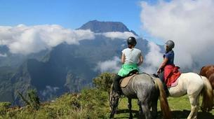 Balade à cheval-Maïdo, Saint-Paul-Balade à cheval découverte sur le Mont Maido, La Réunion-1