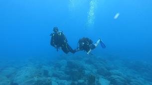 Plongée sous-marine-Réserve Cousteau-Baptême de Plongée dans la Réserve Cousteau en Guadeloupe-1