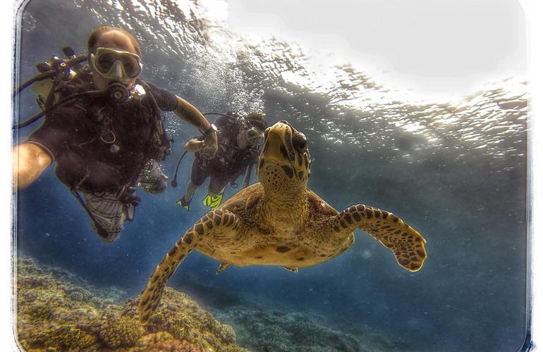 plongee sous marine ile de la reunion
