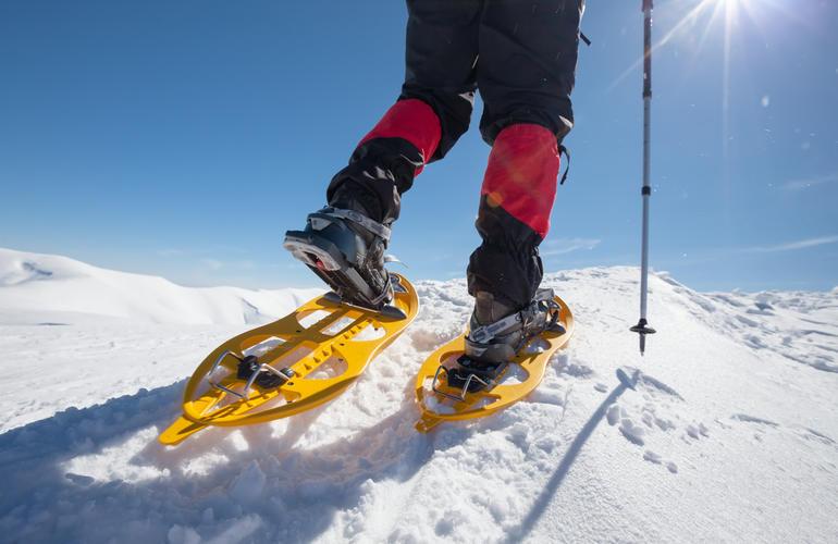 Snowshoeing in Tromsø