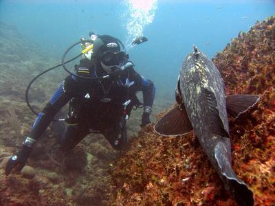 Scuba Diving: Adventure dives in Lesbos