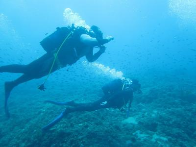 Scuba Diving: Adventure dives in Alexandroupoli, Eastern Greece