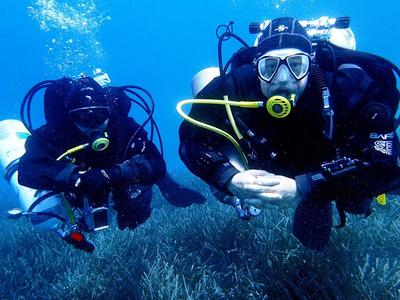 Scuba Diving: PADI Open Water Diving Course in Porto Rafti, Athens