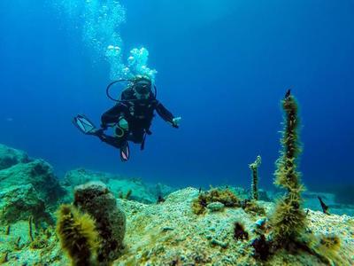 Scuba Diving: Discover scuba diving in Ithaca