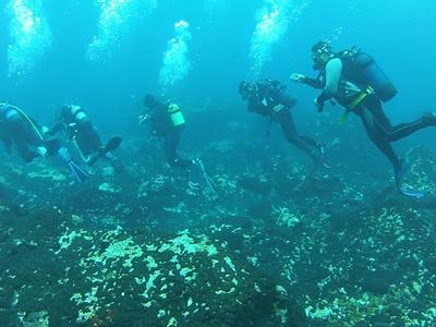 Scuba Diving: Full day private diving trip in Samothraki Island