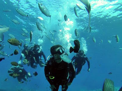 Discover Scuba Diving in Santorini