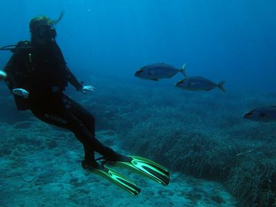 Scuba Diving: PADI Open Water course and accommodation in Alonissos