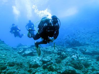 Scuba Diving: Adventure dives and accommodation in Alonissos