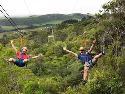 Ziplining excursion on Waiheke Island near Auckland