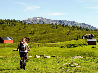 6-day mountain bike excursion in the Norwegian fjords, near Sogndal