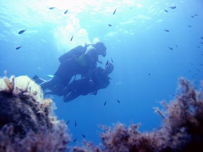 Scuba Diving: First dive boat tour from Laganas, Zante