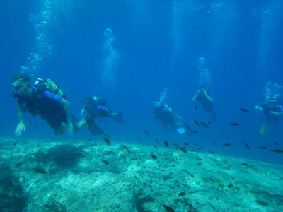 Discover Scuba Diving in Kefalonia