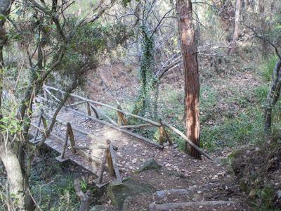 Hiking / Trekking: Intermediate Level Hiking or Running in Thessaloniki