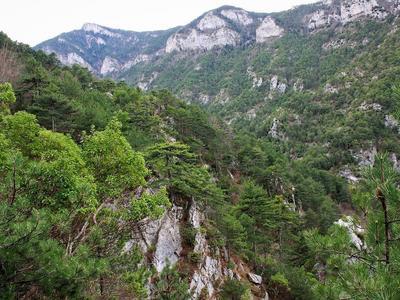 Hiking / Trekking: Hiking Excursion in Mount Olympus - Papa Stream