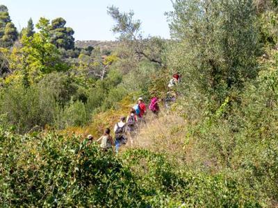 Hiking / Trekking: Hiking in Neos Marmaras and Parthenonas, Halkidiki