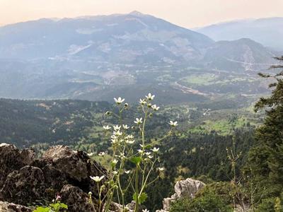 Hiking / Trekking: Hiking to Fairies cave in Parnassos, near Athens