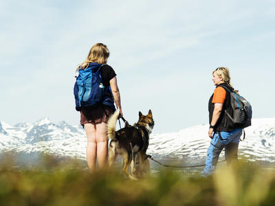 Husky Hike with a visit to the Tromsø cable car