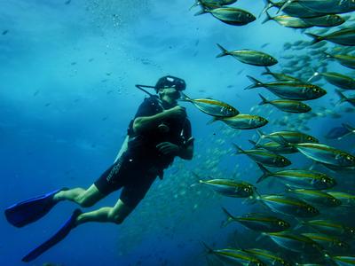Scuba Diving: PADI Discover Scuba Diving from Pounda, in Paros