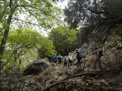 Hiking tour in Kambos Gorge near of Kissamos