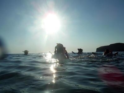 Coastline exploration snorkel tour from Kissamos to Ravdoucha