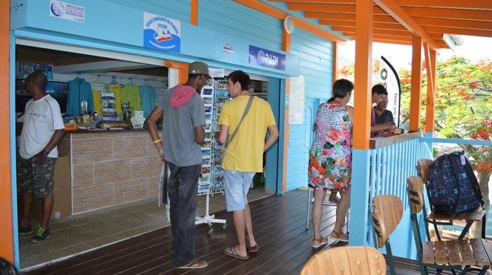 Plongée sous-marine-Réserve Cousteau-Plongées Exploration Guidées ou Autonomes à Basse-Terre, Guadeloupe-6