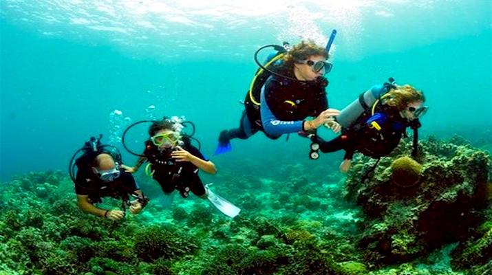 Scuba Diving-Paros-Discover Scuba Diving near Naoussa in Paros-5