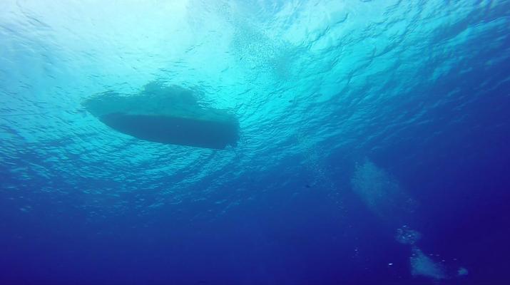 Plongée sous-marine-Bora Bora-Plongées Exploration à Bora Bora-6