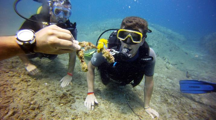 Scuba Diving-Agia Pelagia-Guided adventure dives from Mononaftis Beach near Heraklion-4