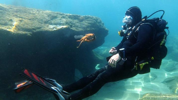 Scuba Diving-Agia Pelagia-Guided adventure dives from Mononaftis Beach near Heraklion-3