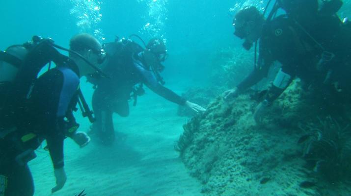 Scuba Diving-Zakynthos (Zante)-Discover Scuba Diving in Tsilivi, Zante-5