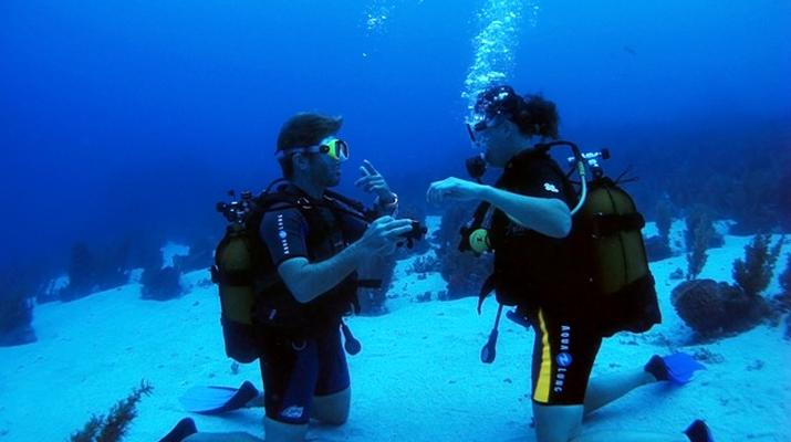 Plongée sous-marine-Les Trois-Îlets-Baptême Plongée aux Trois-Îlets, Martinique-3
