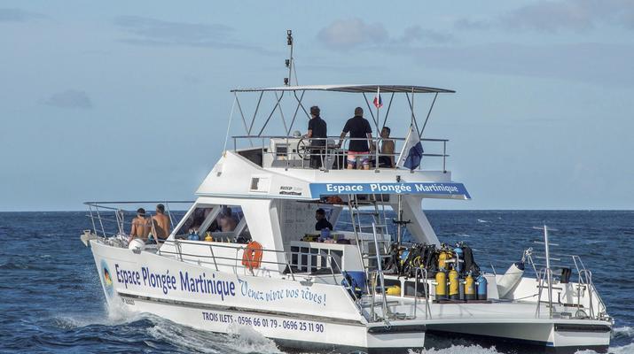 Plongée sous-marine-Les Trois-Îlets-Plongées Exploration aux Trois-Îlets, Martinique-1
