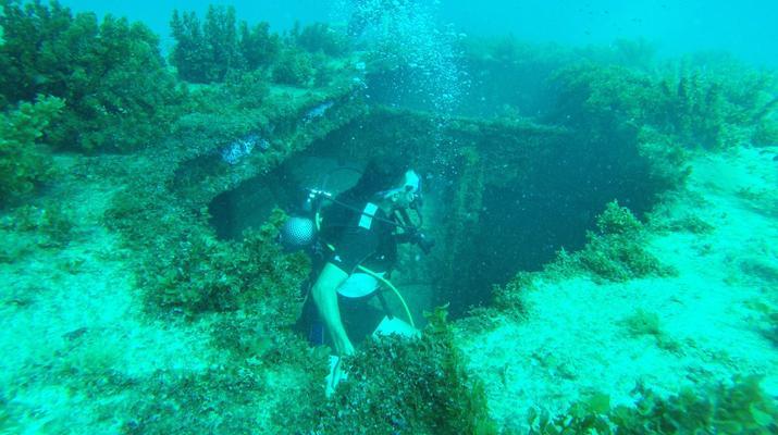 Plongée sous-marine-La Désirade-Plongées Exploration Guidées sur l'Île de la Désirade-1