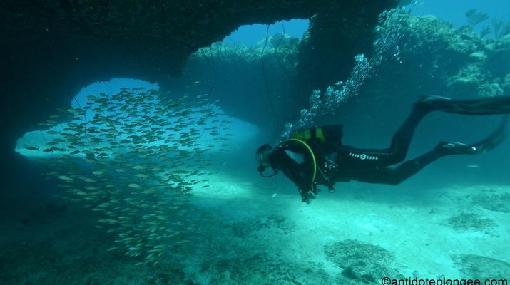 Plongée sous-marine-Port-Louis, Grande-Terre-Plongées Exploration dans les Grottes de Port-Louis, Guadeloupe-1