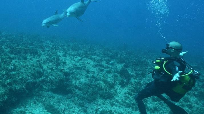 Plongée sous-marine-Port-Louis, Grande-Terre-Baptême de Plongée à Port-Louis, Guadeloupe-1