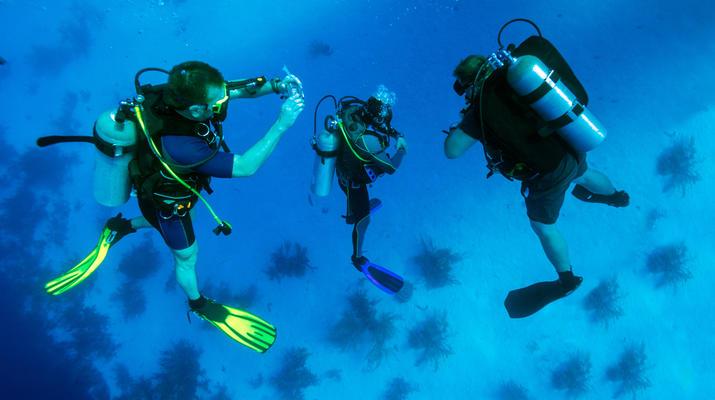 Plongée sous-marine-Bora Bora-Baptême de Plongée Sous-Marine à Bora Bora-6