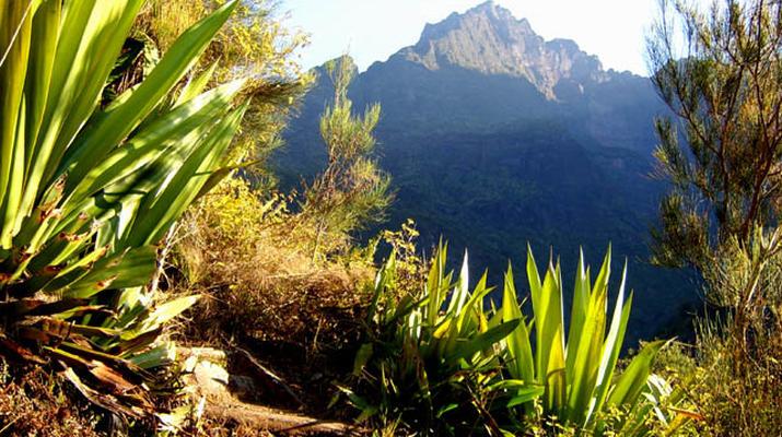 Randonnée / Trekking-Cirque de Cilaos-Randonnée sur le Bras Rouge et à Cilaos à La Réunion-4