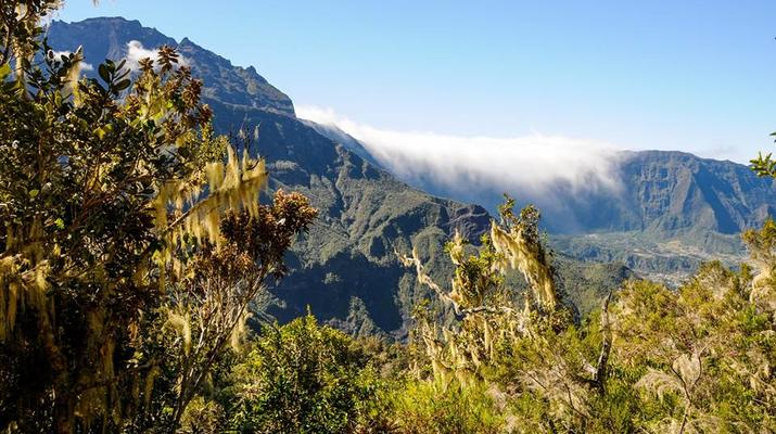 Randonnée / Trekking-Cirque de Cilaos-Randonnée sur le Bras Rouge et à Cilaos à La Réunion-2