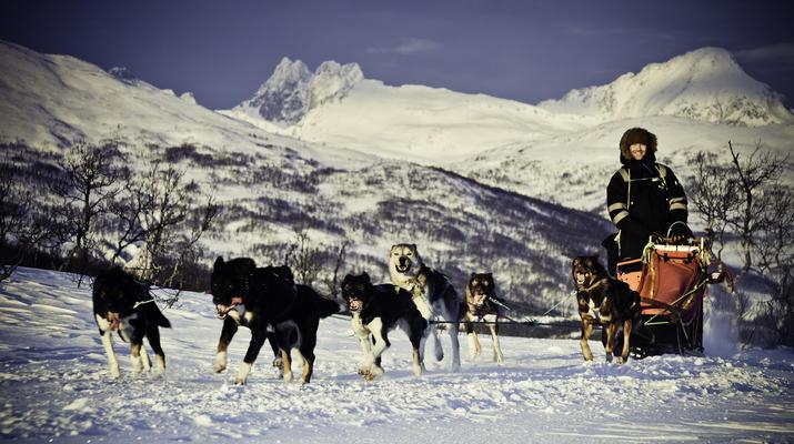 Dog sledding-Tromsø-Full day Arctic dog sledding expedition in Tromsø-1