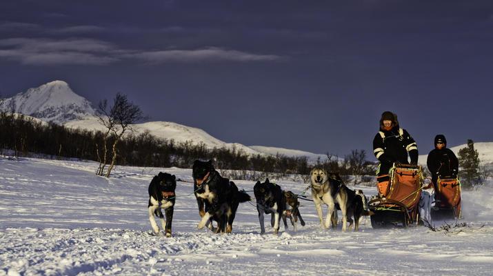 Dog sledding-Tromsø-Full day Arctic dog sledding expedition in Tromsø-2