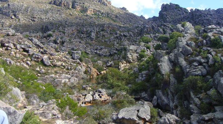 Zip-Lining-Ceres Mountain Fynbos Nature Reserve-Ziplining excursion in Ceres Mountain Fynbos Nature Reserve-5