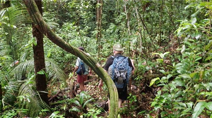 Randonnée / Trekking-Guyane-Expédition trekking dans la Forêt Amazonienne en Guyane Française-6
