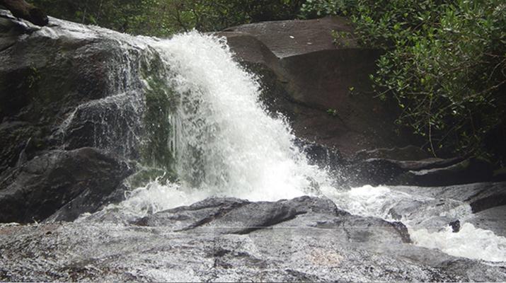 Randonnée / Trekking-Guyane-Expédition trekking dans la Forêt Amazonienne en Guyane Française-1