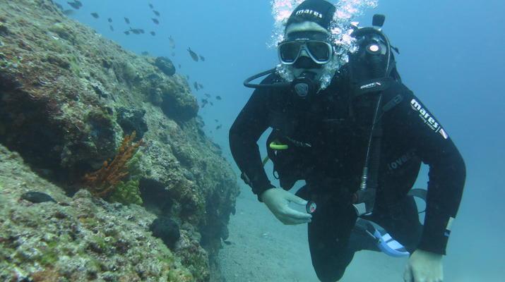 Scuba Diving-Split-Discover scuba diving in Split-4