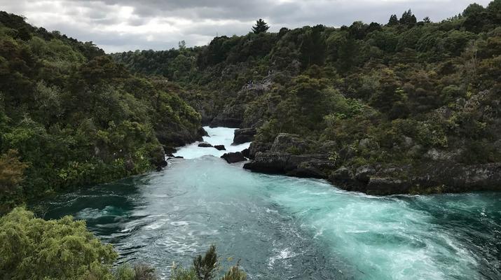 Jet Boating-Rotorua-Jet boating on the Waikato River near Rotorua-6