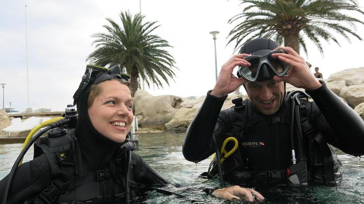 Scuba Diving-Split-Discover scuba diving in Split-3