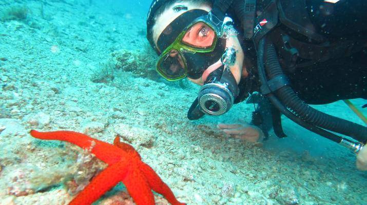 Scuba Diving-Split-Discover scuba diving in Split-1