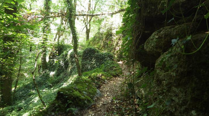 Canyoning-Parc national des Cévennes-Canyoning dans les gorges de la Dourbie, Cévennes-2