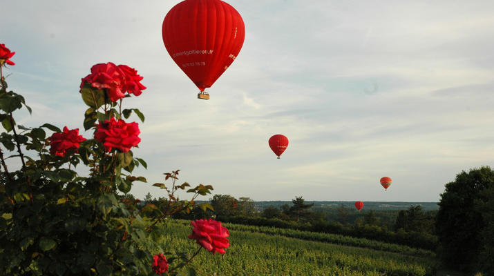 Hot Air Ballooning-Tours-Hot air balloon flight in Amboise, Touraine-5